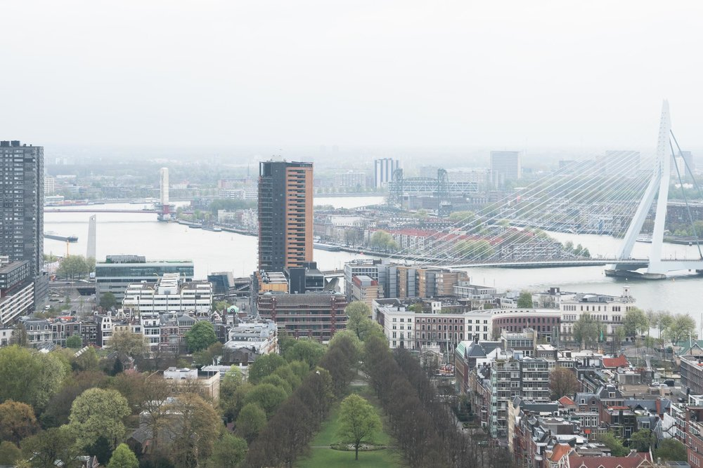 rotterdam-5.jpg
