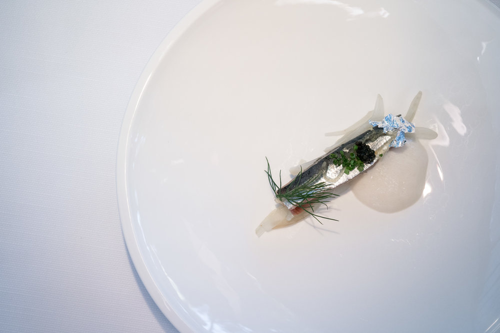 - sardine, candy lemon, fennel