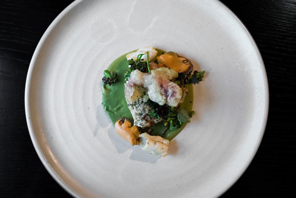 MISO STEAMED COD - purple sprouting broccoli — squid — sea purslane