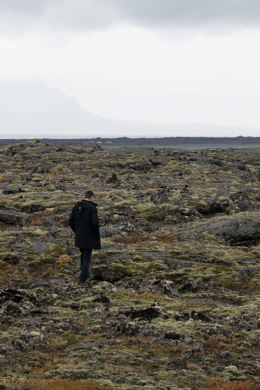 iceland_myvatn_lava_field-1.jpg