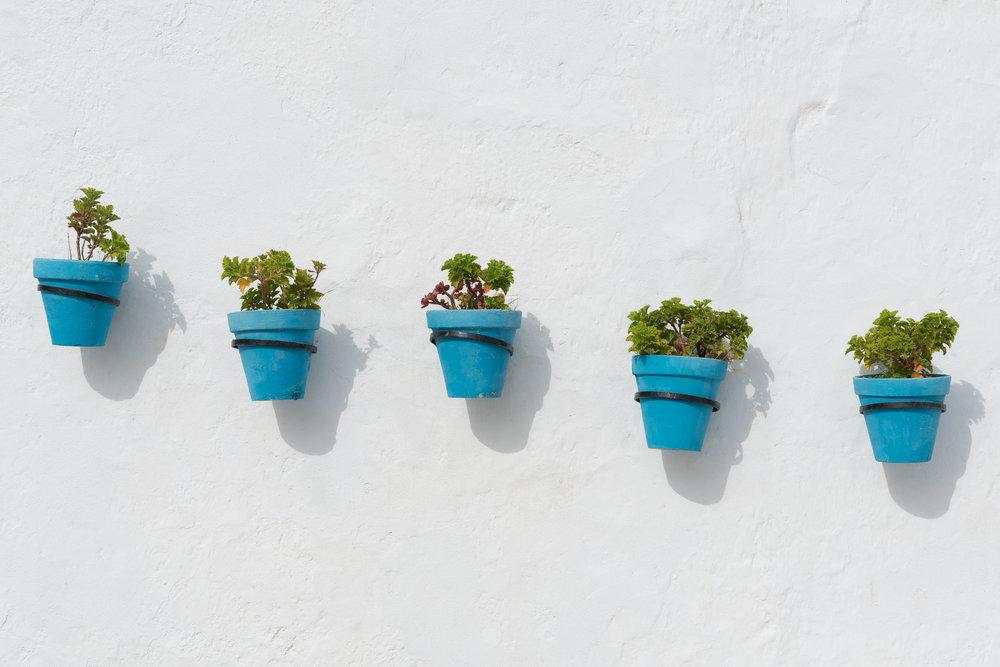 the_getaway_edit_spain_vejer_de_la_frontera-5.jpg