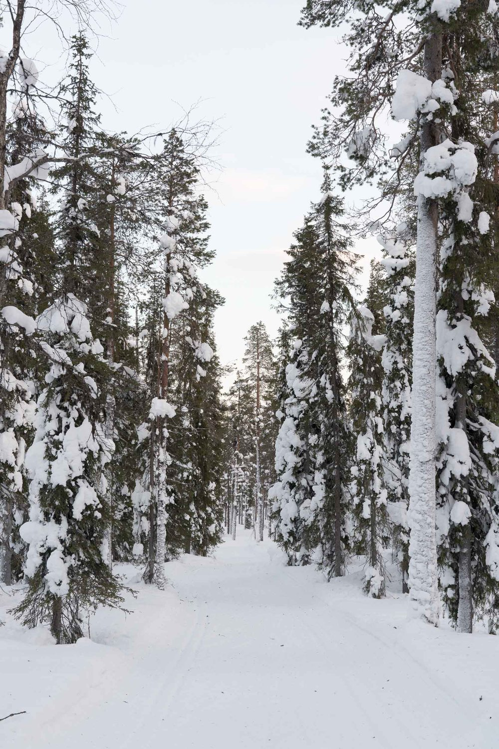 the_getaway_edit_finland_lapland-5.jpg