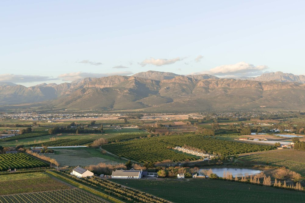 the_getaway_edit_south_africa_cape_winelands_babylonstoren-14.jpg