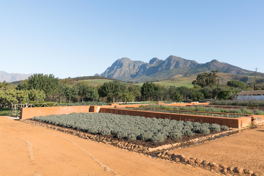 the_getaway_edit_south_africa_cape_winelands_babylonstoren-8.jpg