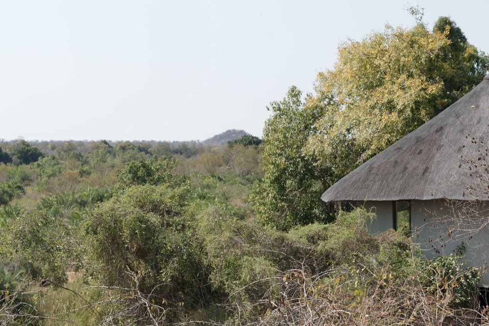 the_getaway_edit_south_africa_safari_londolozi_game_reserve-46.jpg