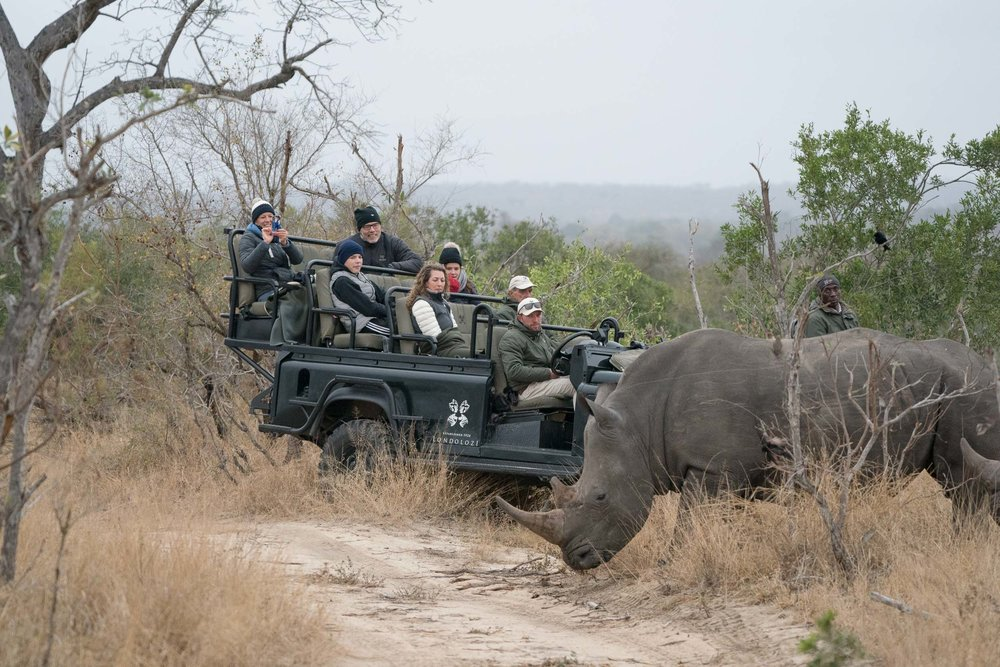 the_getaway_edit_south_africa_safari_londolozi_game_reserve-6.jpg