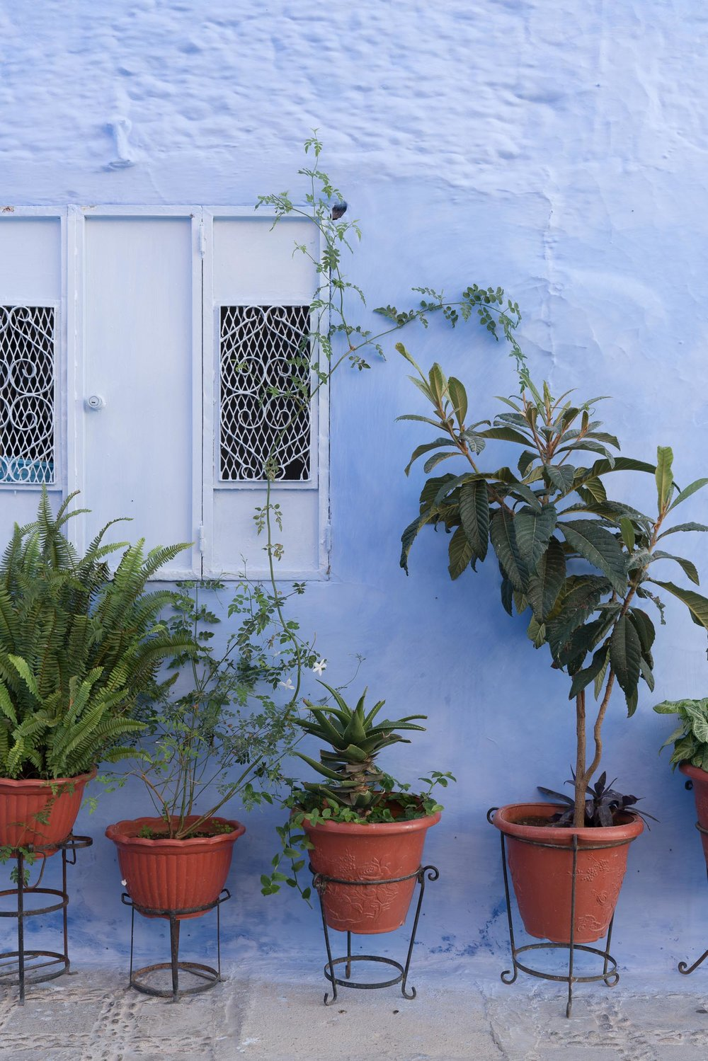 the_getaway_edit_morocco_chefchaouen-10.jpg
