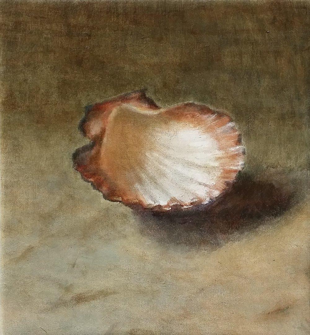 shell,1,oil.jpg