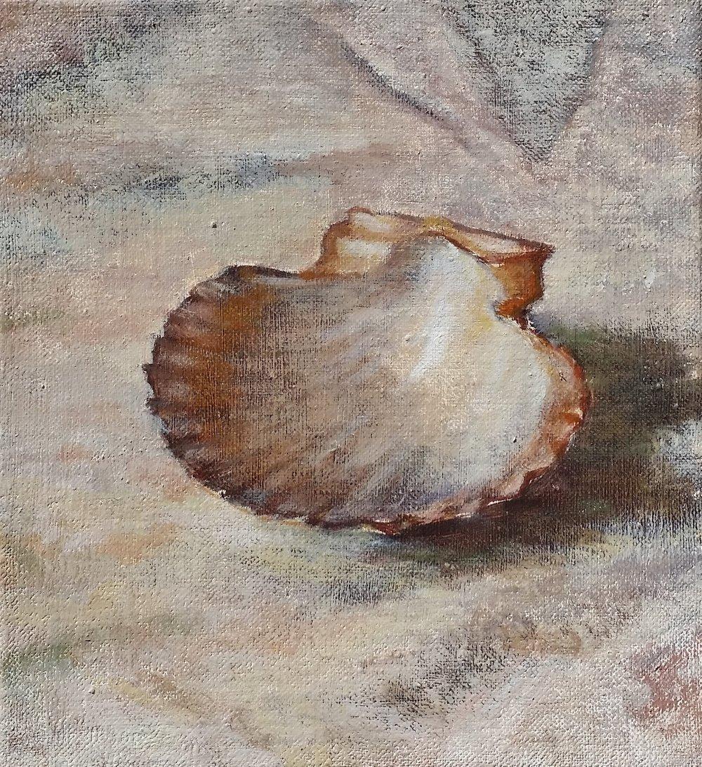 shell,3,oil.jpg