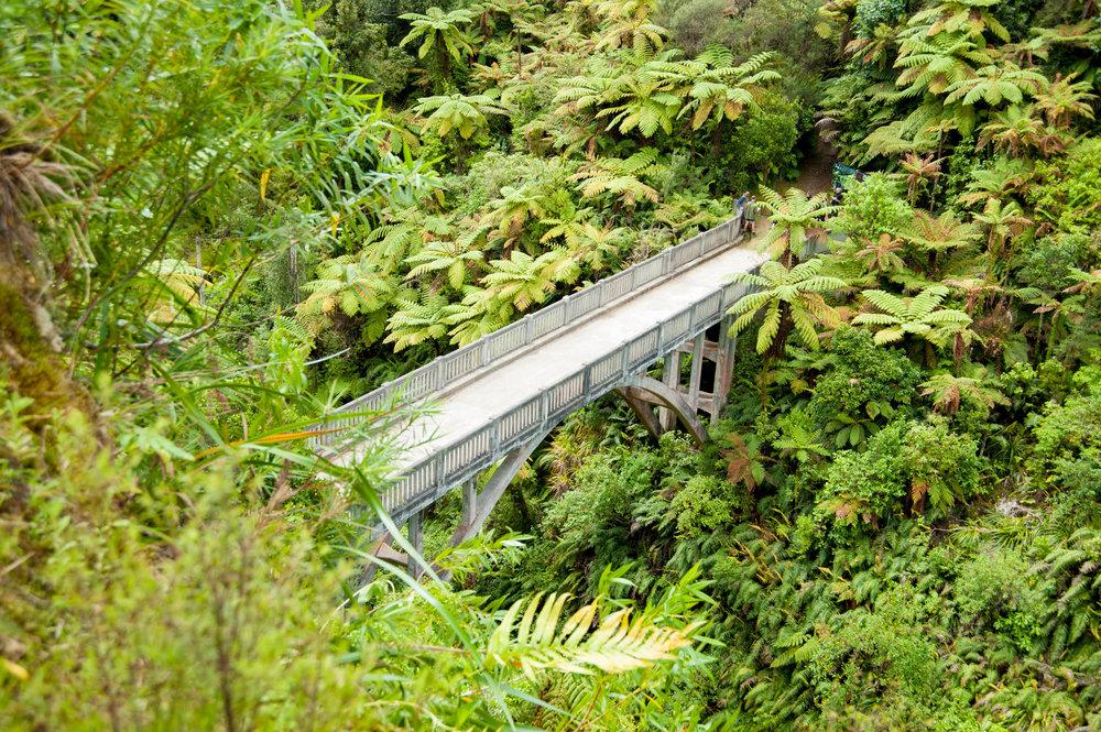 whanganui-49.jpg