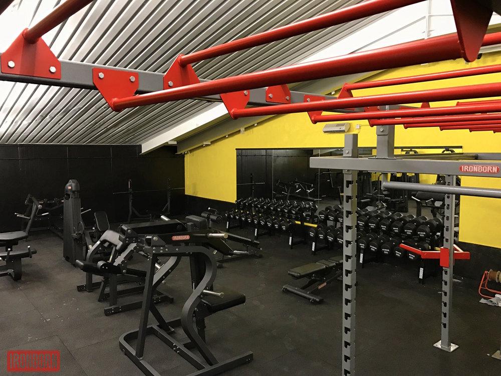 Primal Fitness - Aberystwyth