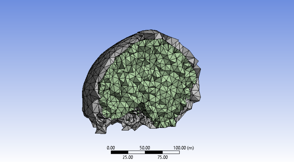 ANSYS Mesh 3.PNG