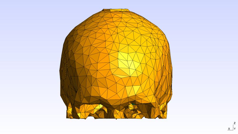 Skull Gmsh 4.PNG