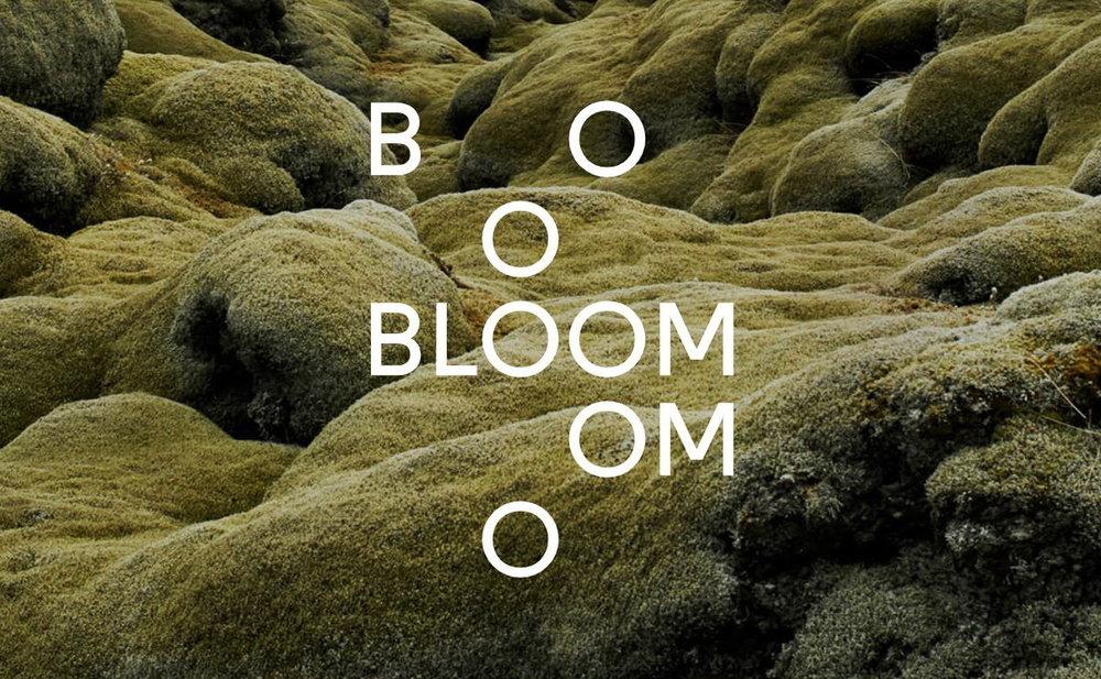 Bloom page cropped.jpg
