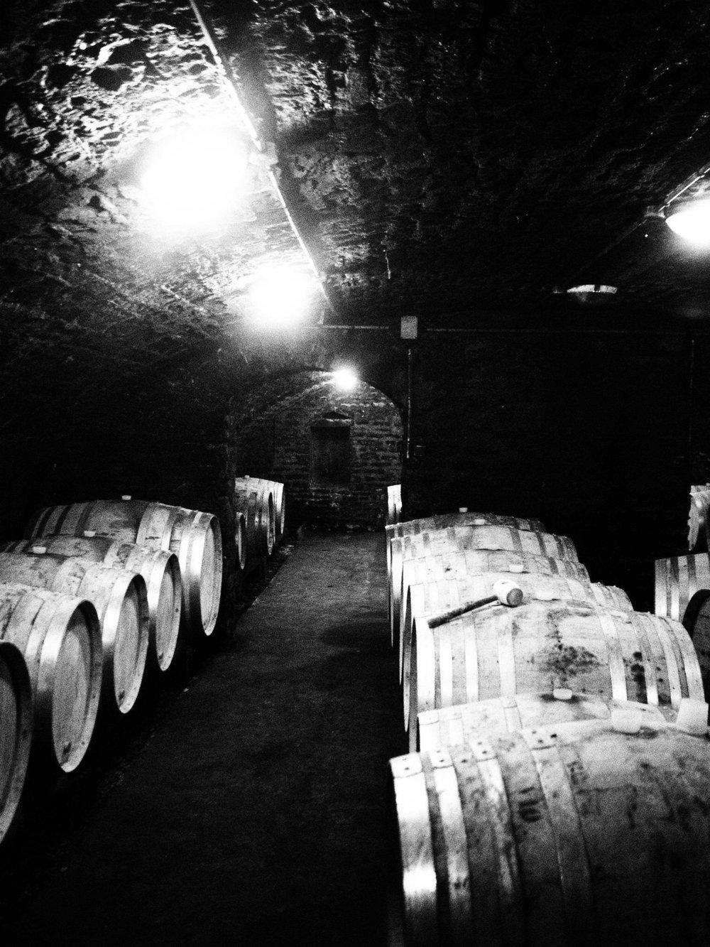 The cellar at Bizot