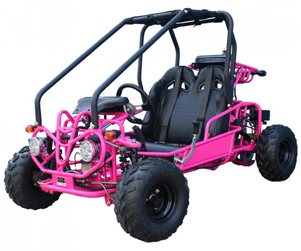 TaoTao Kids - · Engine: 110cc· Brakes: Discs· Starter: Electric· Transmission: Automatic· Cooling: Air Cooled· Various Colors· Limited availability