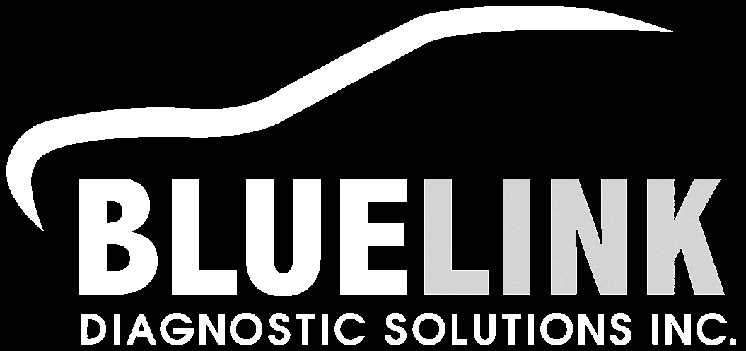 BlueLink Diagnostic Solutions