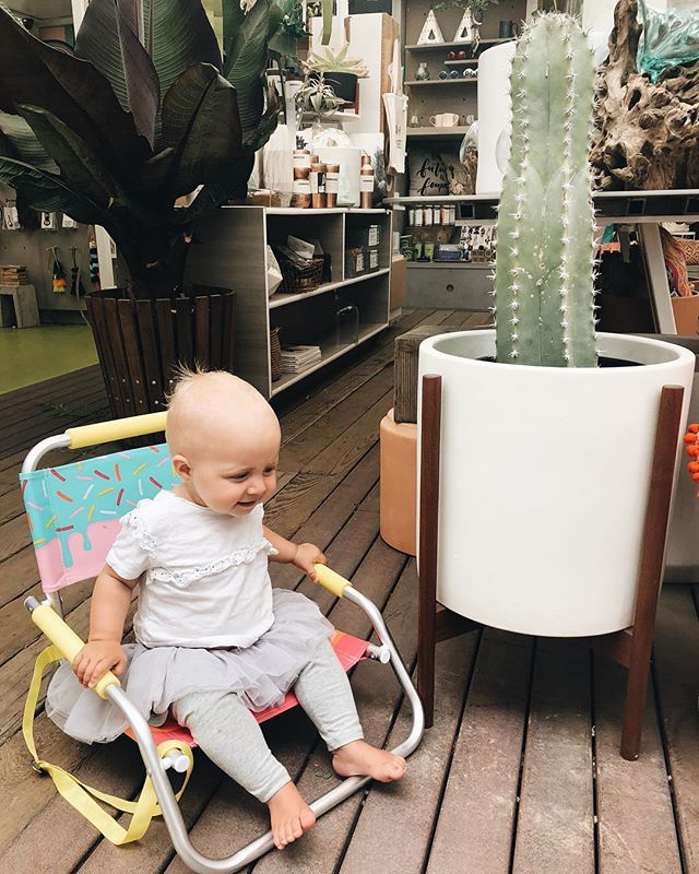 Babies & cactus & all things magical. Happy Wednesday! ✨ • • • • • ‭ #growvenice #interiordesign #designla#modernlife#cool#venturesome #abbotkinney #happyjanuary #gooutsideandbe #2018#venicebeach#apartmenttherapy #bohodecor#bohohome #designsponge #fpme#jungalow #jungalowstyle#plantsmakepeoplehappy #urbanjungle#botanicalpickmeup #plantlove #plantlover #joshuatree #desert #hotel #cool #picoftheday #likeback #followforfollow