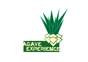 agavestatic1.squarespace.com.jpeg