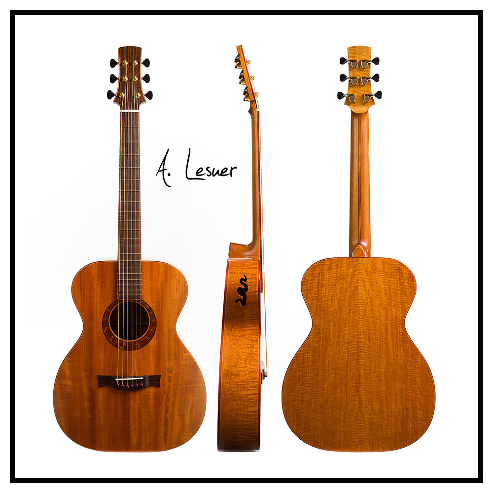 Guitar Collection, Andrew Lesuer - 01