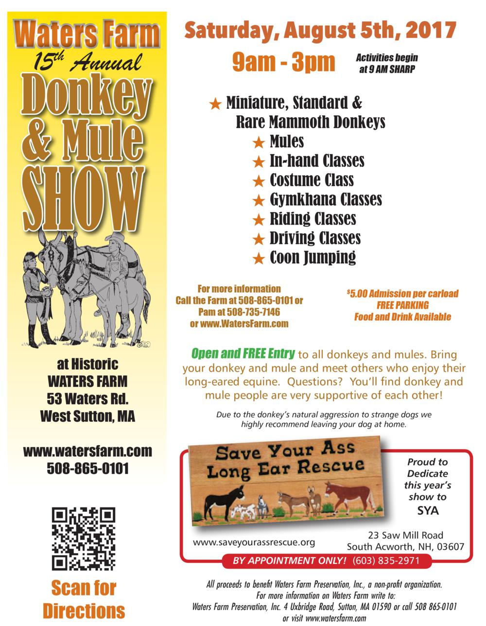 donkeyshow-raindate.png