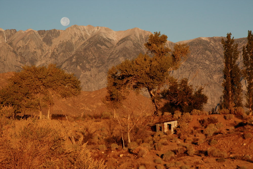 ArleneMKatz_Moonset, Bishop, California.JPG