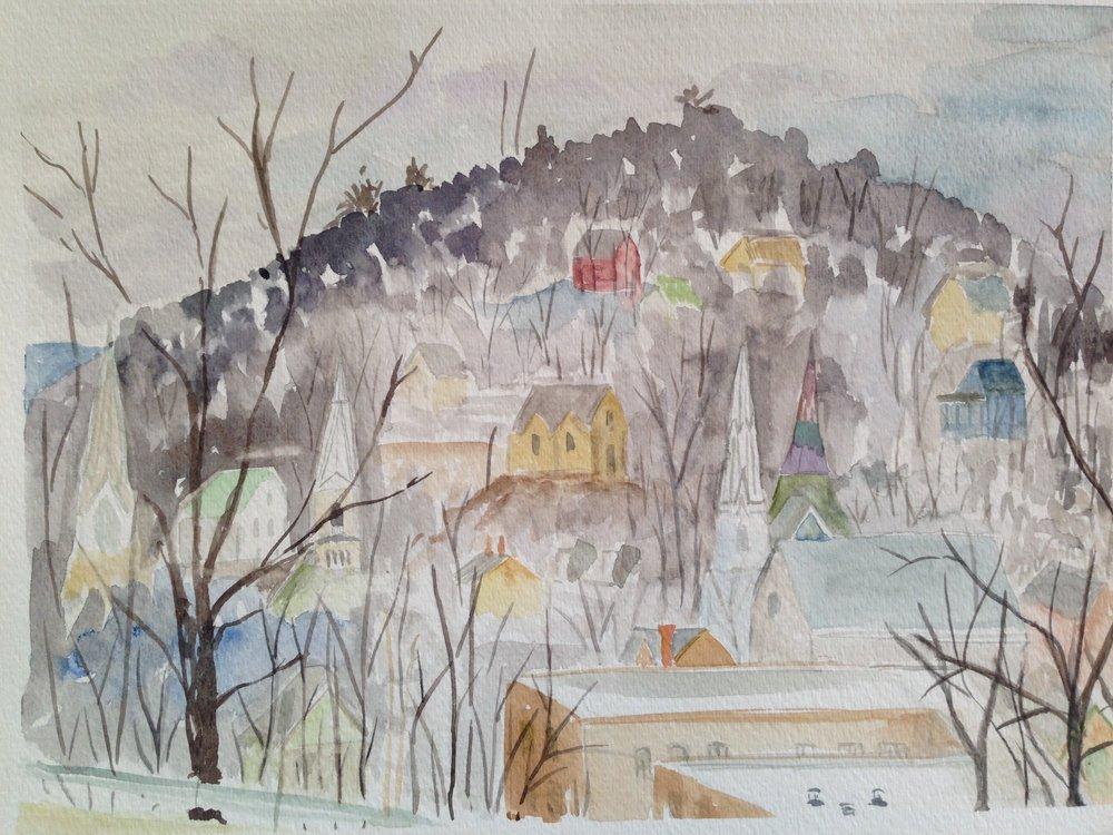 BiancaSShagrin_Vermont Winter.jpg