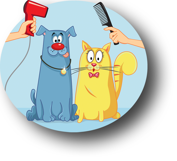 The barking lot pet grooming la mesa ca best pet groomer solutioingenieria Image collections