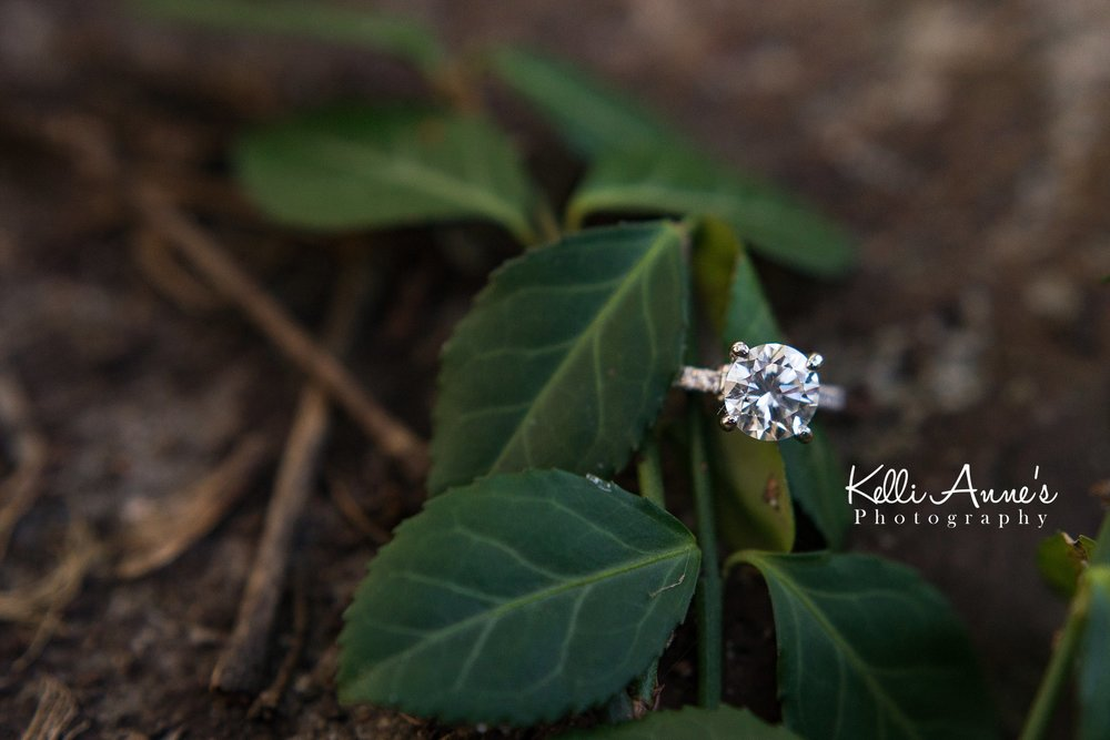Engagement Session, Fall, Capen Park, Columbia MO, Bling, Diamond ring, center stone, diamond band, rust, ivy, green leaves
