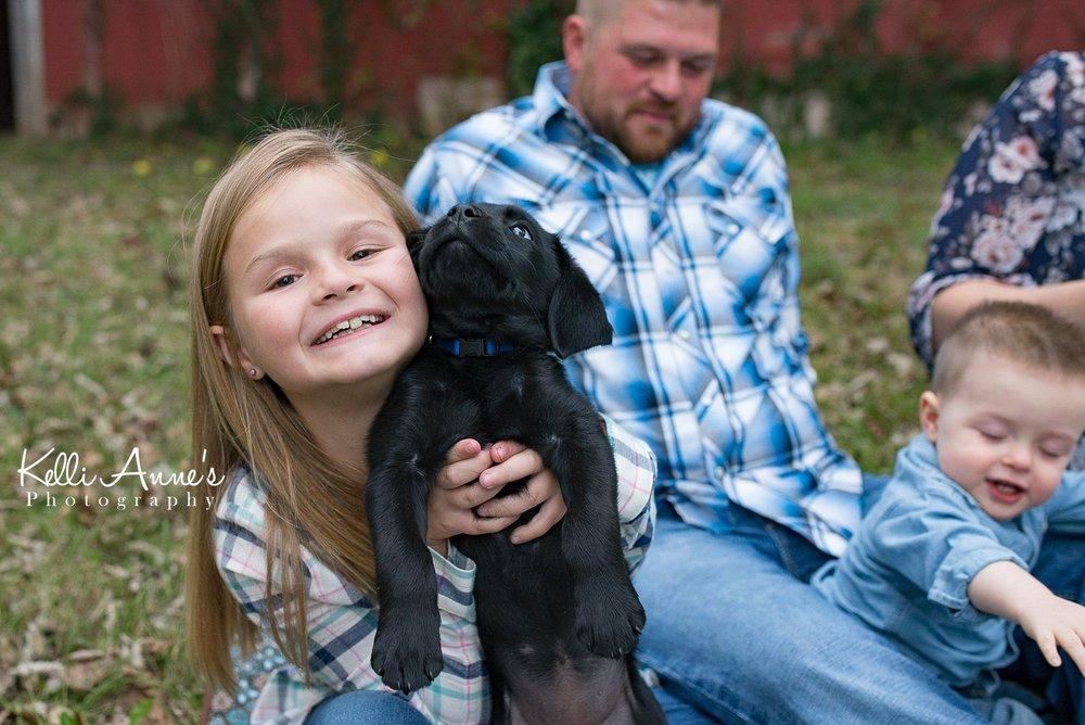Puppy love, lab puppy, springfield mo