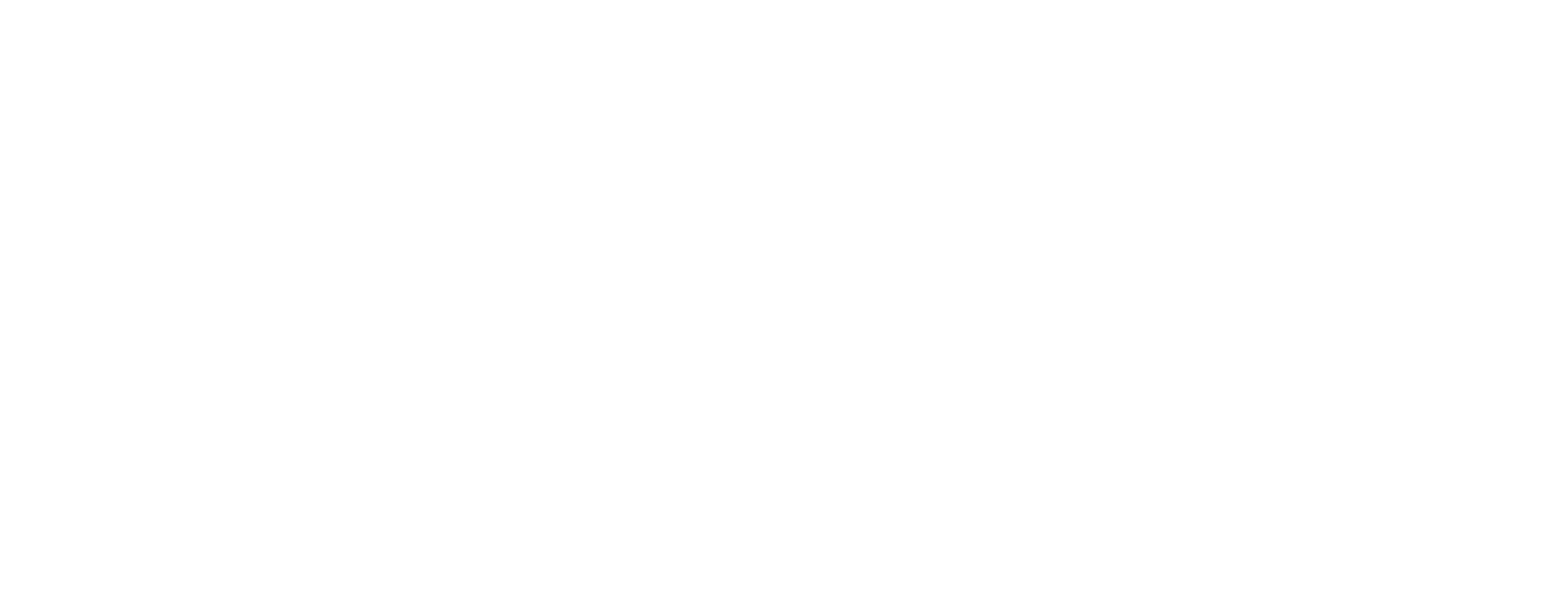 Alana Battiston Wellness