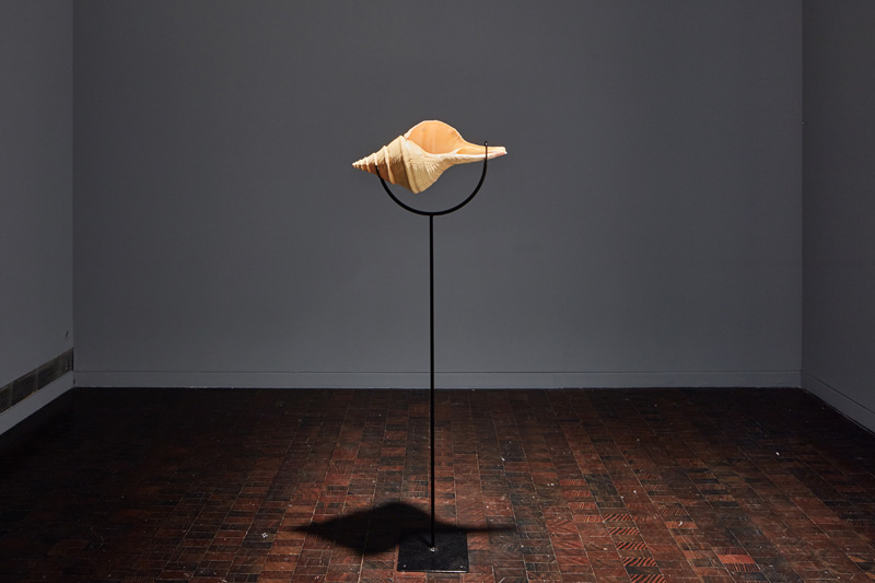 David Kasprzak, The Diminishing, But Never Final, Sounds of the Dying, 2017. Syrinx aruanus shell, steel, media player, sonic transducer, looped sound, 56 x 10 x 10 in. Photo by JKA Photography.