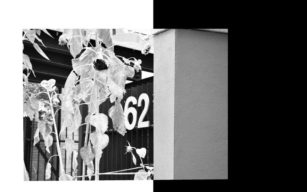 filipa-book-design(final)_Page_16.jpg
