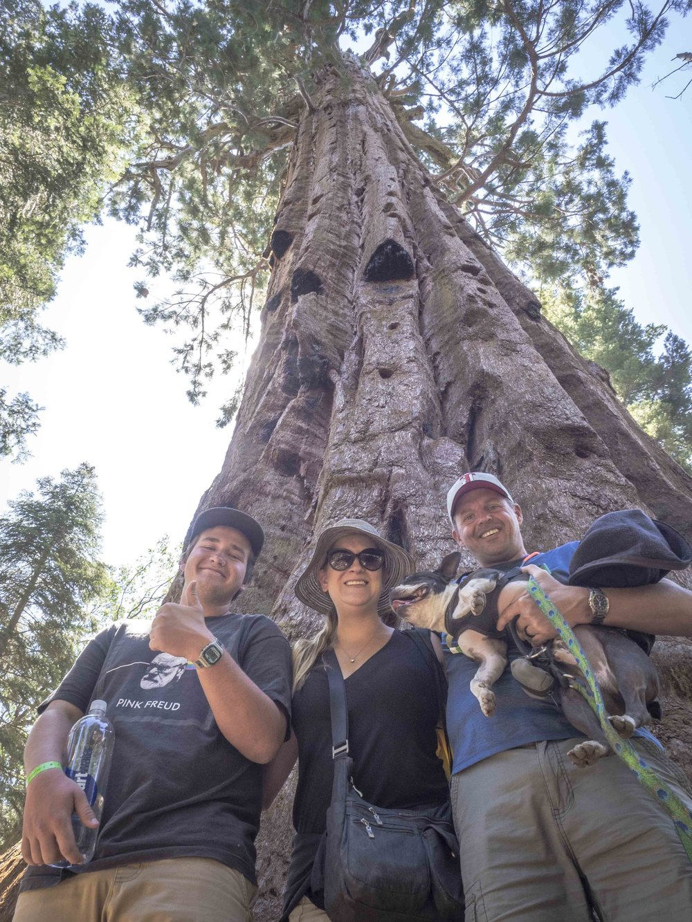 Sequoia National Forest with the Ellises | September 2018