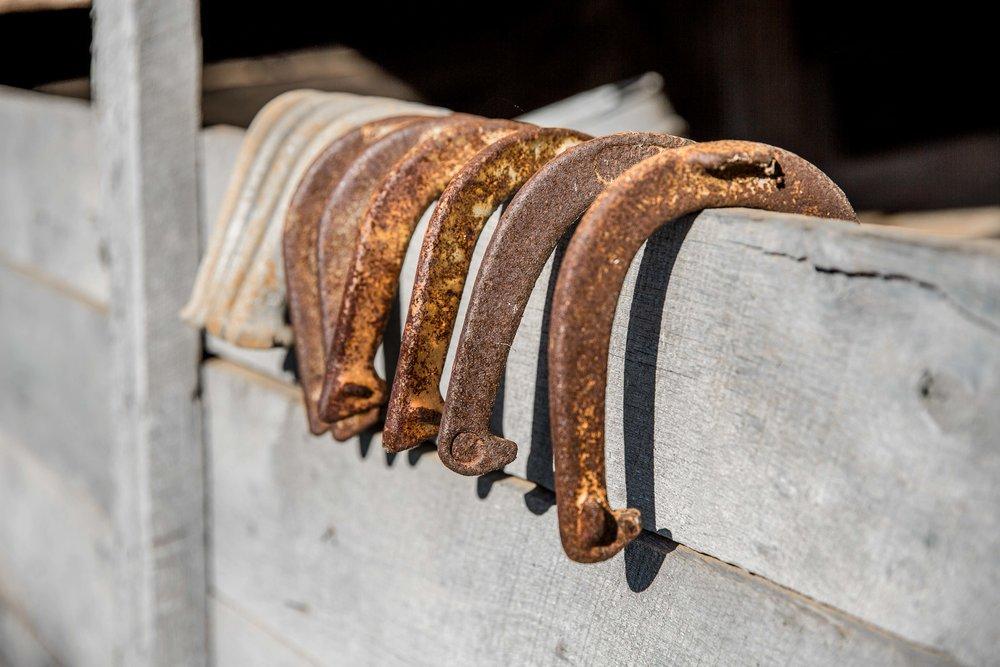 Horseshoe Lineup