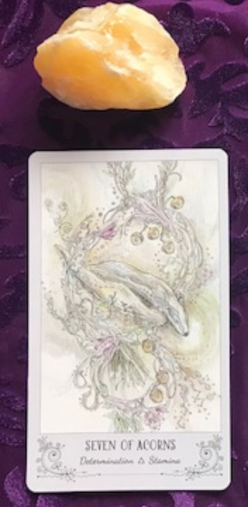 Gift - Seven of Acorns