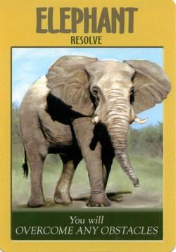 ELEPHANT - Power Animal Oracle
