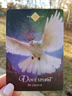 DOVE SPIRIT - Spirit Animal Oracle