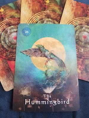 THE HUMMINGBIRD - Mystical Shaman Oracle, Colette Baron-Reid