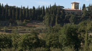 The Strozzi winery