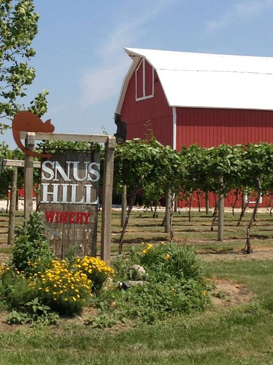 Snus_Hill_Winery_5.jpg