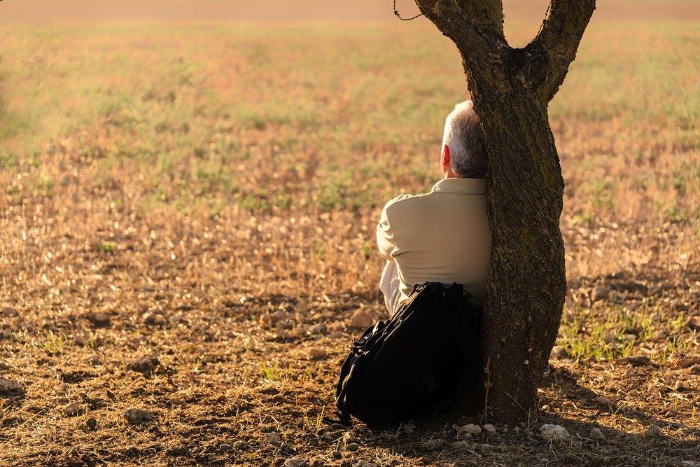 Man leans against a tree trunk in an open field