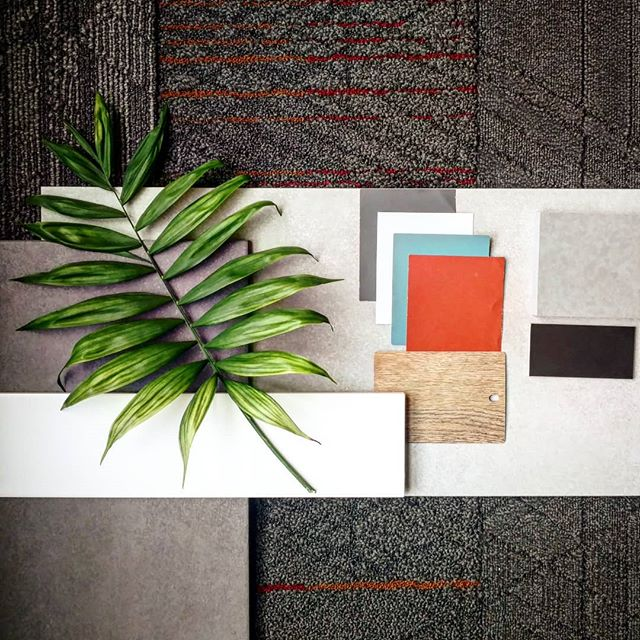 Who loves finish boards!? 🙋 Along with architecture, here at Agora Architecture we also work on interior architecture, which allows the clients design goals to be integrated through every part of the building. We are pretty excited about the finishes we are selecting and collecting for a project under construction! Stay tuned for more info! #finishes #interiordesign #interiorarchitecture #design #carpet #tile #paint #laminate #architecture #kansas #finishboard #instaarchitecture #instadesign #instainterior