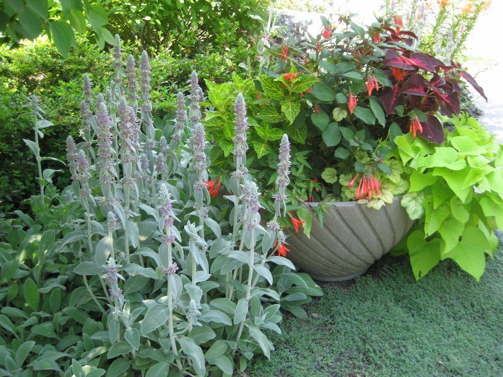 A&C gardens planters 2 (1280x960).jpg