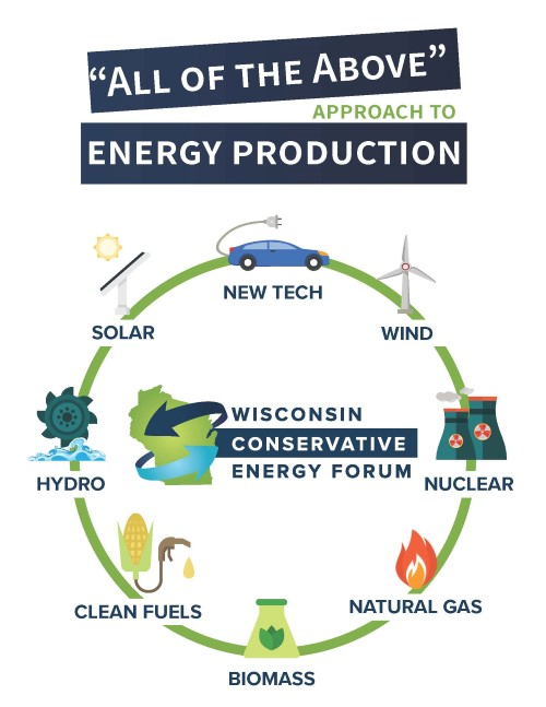 WISCEF All Of The Above Infographic