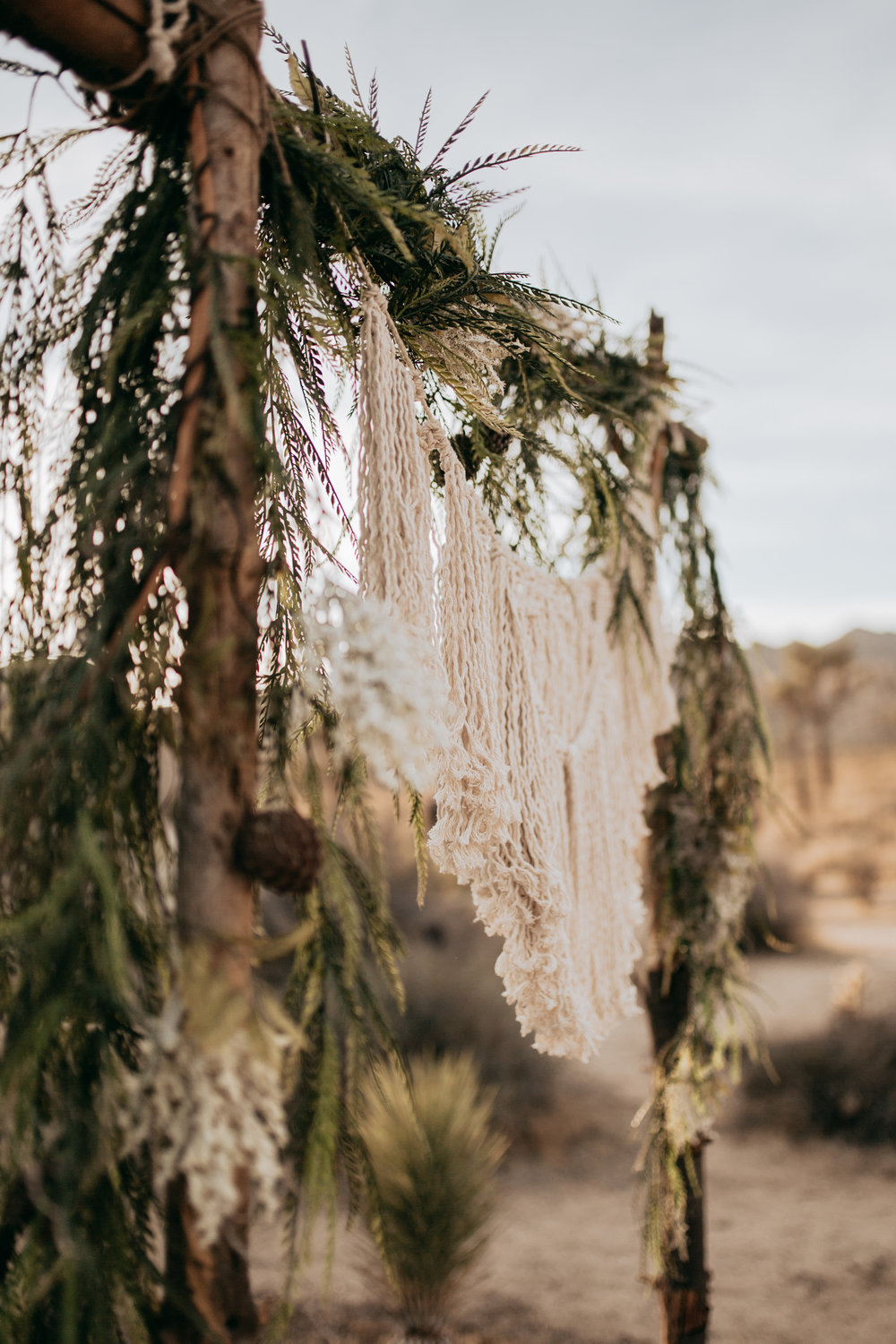 palmsprings_joshuatree_california_wedding_photographer-2.jpg
