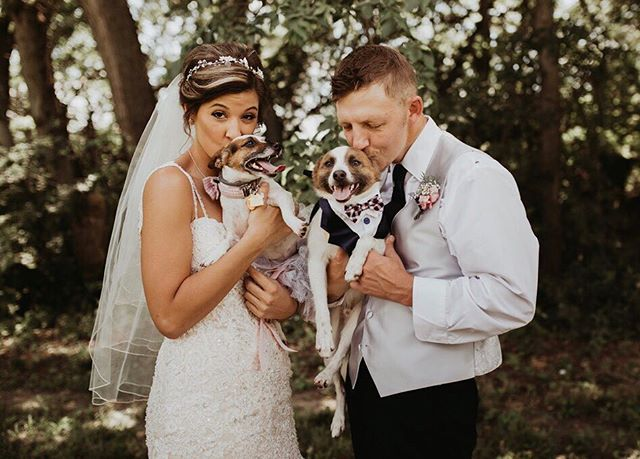 Both of my last two weddings had their dogs (dressed as a bride and groom, of course) walk down the isle right before the bride. And they stood up in front the whole time too. Literally the cutest thing ever!!!