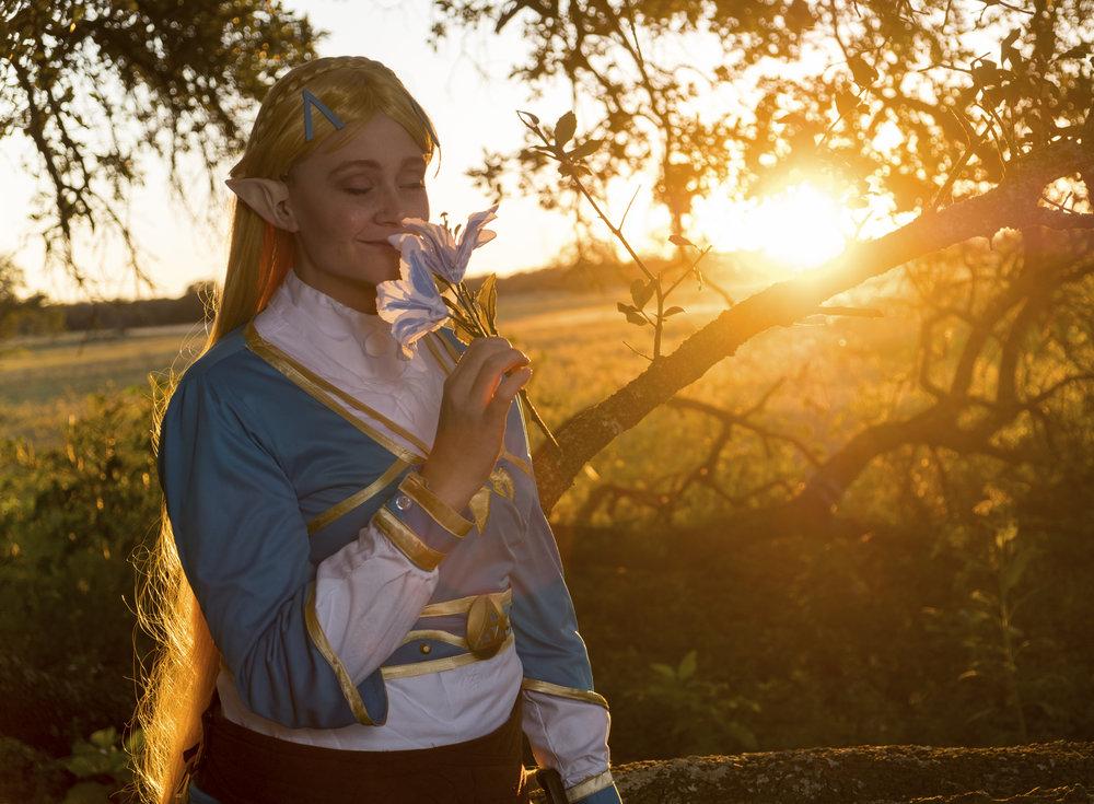 Allybelle Cosplay - Princess Zelda - The Legend of Zelda: Breath of the Wild