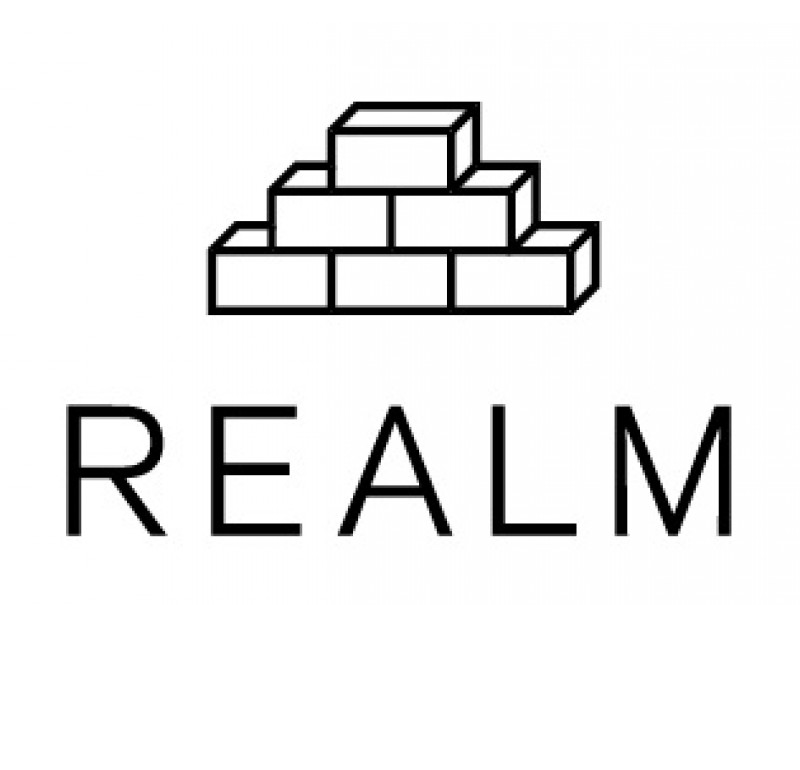 REALM Charter School.png