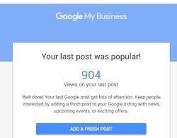 Google-My-Business-Resutls-2-MyrnaPD.jpg